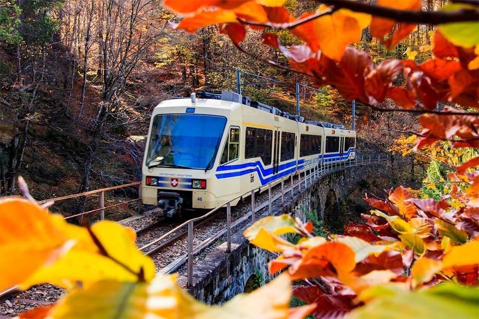 Un giro sul treno del foliage per ammirare la bellezza dell'autunno